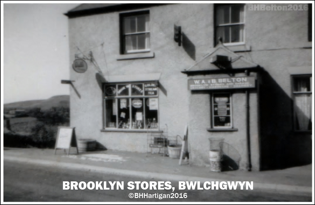 Brooklyn Stores BHBelton 2016